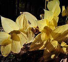 Citrine Leaves by CADavis