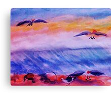 Seagulls in the surf, watercolor Canvas Print