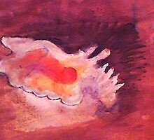 Conch shell, watercolor by Anna  Lewis