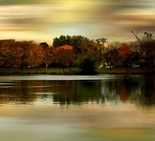 Evening Sets In © by Dawn M. Becker