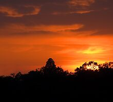 July Sunset and Silhouettes by Sue Robinson