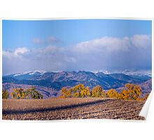 Colorado Autumn Morning Scenic View Poster