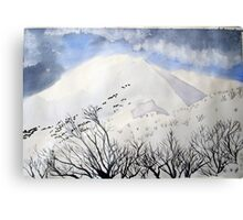 Mt. Feathertop  in  August  snow Canvas Print