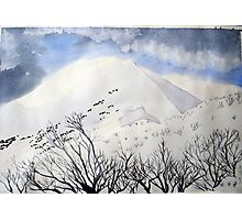 Mt. Feathertop  in  August  snow Photographic Print