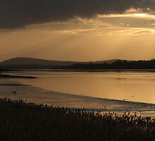 Sunset on the Foyle by Adrian McGlynn