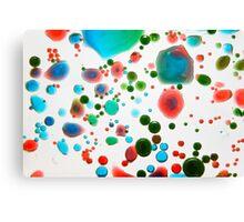 A Dash of Colour Canvas Print