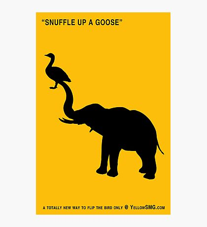 SNUFFLE UP A GOOSE Photographic Print
