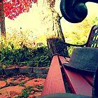Oxford, MI   Autumn 8 by RJtheCunning