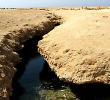 Ras Muhammed national park Egypt: earthquake crack by Cara Johnson