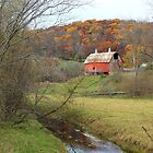 Autumn at Stoney Creek Farm by wiscbackroadz