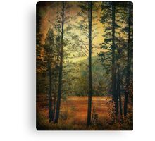 I Don't Know What to Believe In Canvas Print