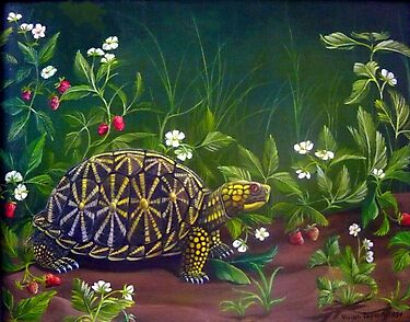 Florida Box Turtle, Strawberries and Blooms by Vivian Eagleson