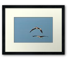 Squadron Leader and His Wingman Framed Print