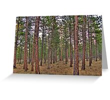 ponderosa trail Greeting Card
