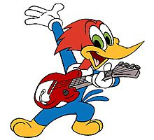woody woodpecker Photographic Print