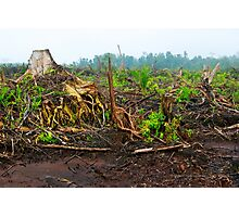 Is Bio Fuels a green option?  Photographic Print