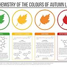 Autumn Leaves Chemistry by Compound Interest