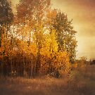 Autumn Landscape by KBritt