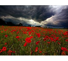 STORM BREWING OVER POPPY FIELD Photographic Print