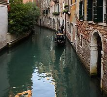 Venice Italy - Green Canal Reflections and a Gondola by Georgia Mizuleva