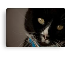 Am I cute or what?! Canvas Print