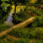 Crossing the ditch by Nicole W.