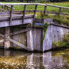 Part of an old wooden bridge by Nicole W.
