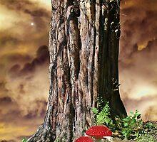 Woodland Fantasy by Christine Lake
