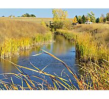 Prairie Creek Photographic Print