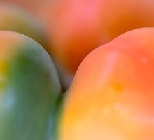 fruity bodyscape by yvesrossetti