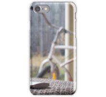 Quiet Cruiser iPhone Case/Skin