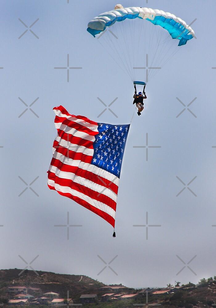 Waving the Flag by Heather Friedman