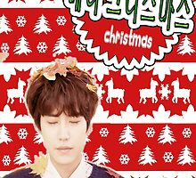Merry Kpop Xmas [Kyuhyun] by thescudders