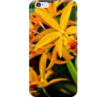 Beauty No.2 iPhone Case/Skin
