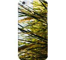 Landscape No.2 iPhone Case/Skin