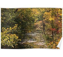 Kansas Flint Hill's Stream in the Fall Poster