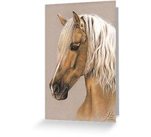 Spanish Horse - Berber Pferd Greeting Card