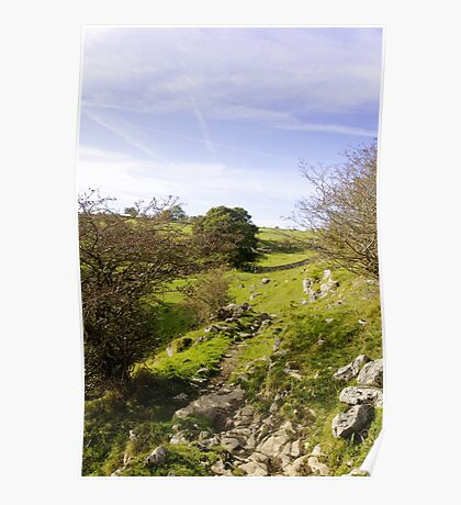Rocky Terrain in Lathkill Dale  Poster