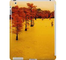 cypress trees on the bayou iPad Case/Skin