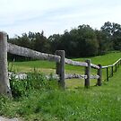 Outback Fencing by Russell Voigt