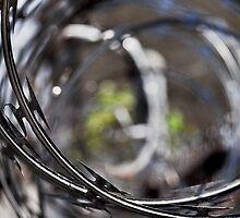 razor wire by Phillip M. Burrow