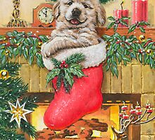 Stocking Stuffer by Rembrant