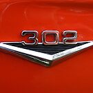 Ford 302 Badge  by Russell Voigt