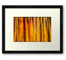 Fallscape Framed Print