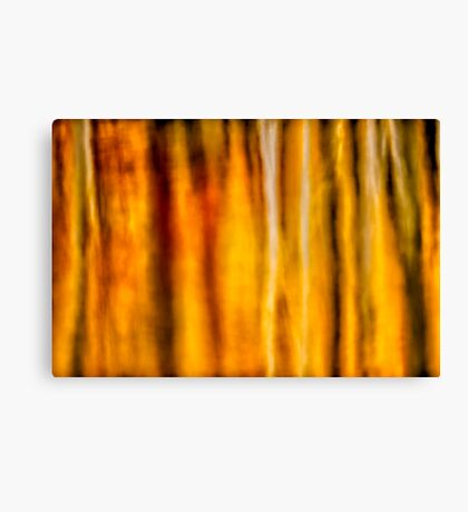 Fallscape Canvas Print