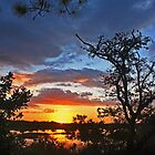 sunset at collier seminole state park by cliffordc1