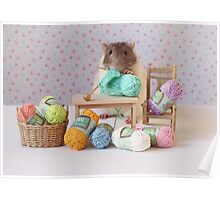 Snoozy wanted to knit ! Poster