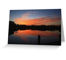 sunrise over the everglades Greeting Card