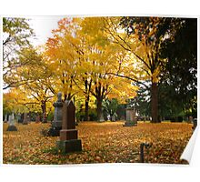 Historic Thornhill Community Cemetary Poster