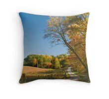To Wander is a Privilege Throw Pillow